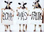 El veganismo no es una filosofía de salón, sino acción